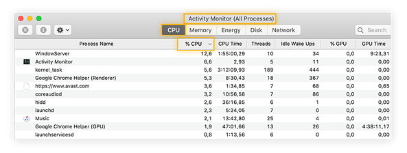 Using Activity Monitor to see what's hogging your CPU and taking up the most computer power.