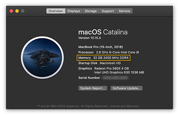 """Viewing system information in macOS Catalina inside the Overview tab of the """"About This Mac"""" menu"""
