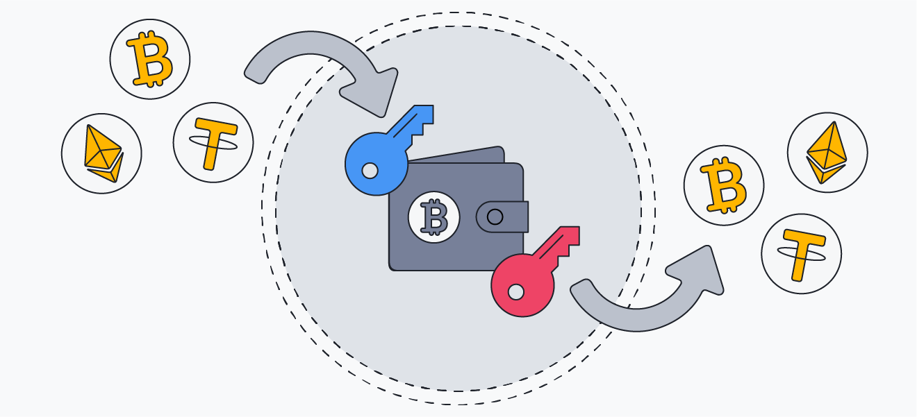 Public keys are used to transfer cryptocurrency to a wallet, and private keys are used to access the currency stored in a wallet.