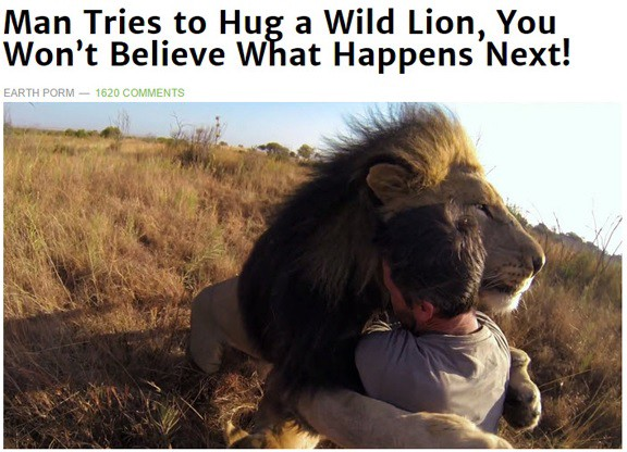 """An example of clickbait — """"Man Tries to Hug a Wild Lion, You won't Believe What Happens Next!"""""""